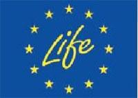 Logo - Life
